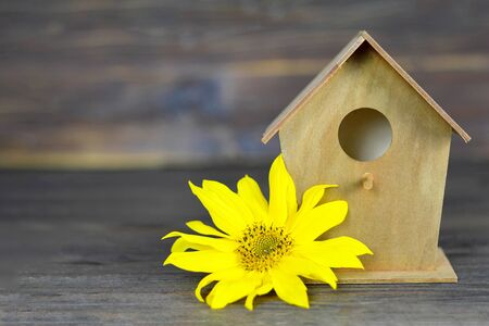 Bird house and yellow flower on wooden background