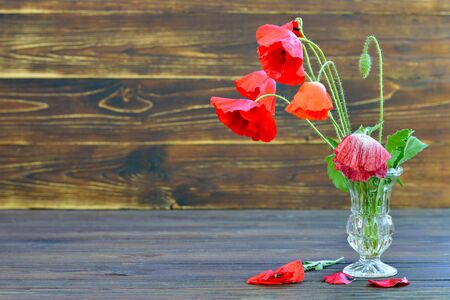 Poppy flowers in vase on wooden background with copy space 写真素材