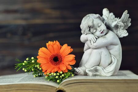 Guardian angel sleeping on old book