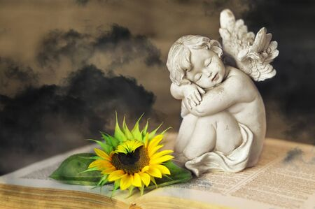 Guardian angel and sunflower on the book with dark sky in background