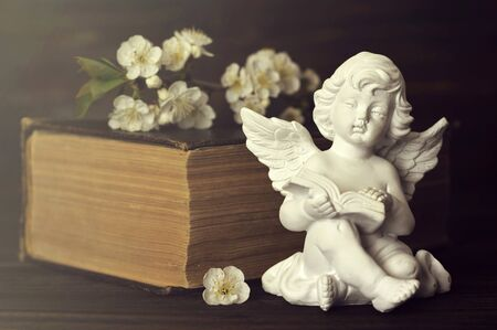 Guardian angel, spring flowers and book Banco de Imagens