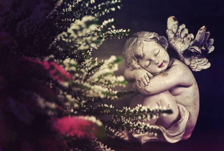 Ange et fleurs sur fond sombre