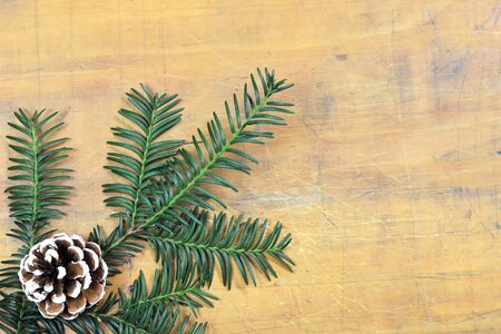 Christmas background with pinecone and fir branch Stock Photo