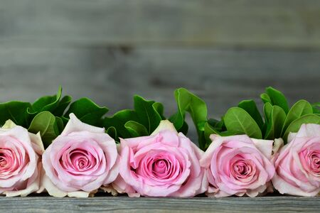 Mothers Day background with border of pink roses