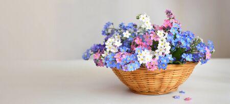 Mothers Day flowers. Forget me not flowers in the basket Zdjęcie Seryjne