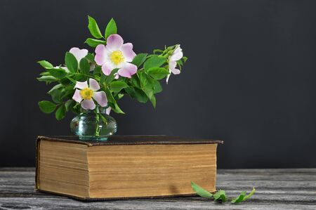 Wild roses in vase and old book on dark background with copy space