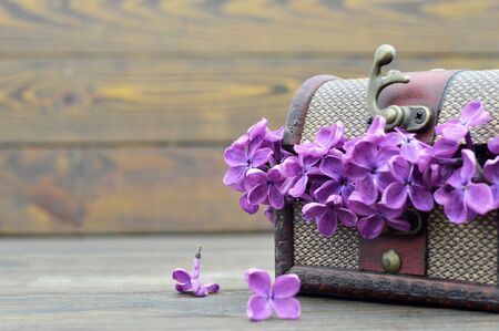 Mothers Day card. Lilac flowers in wooden vintage chest