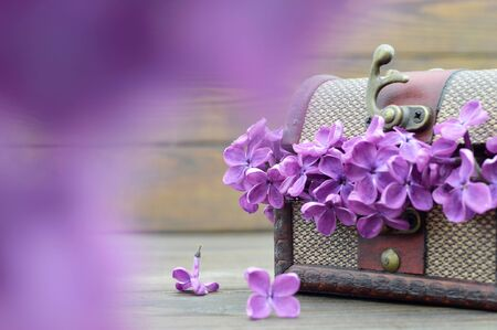 Womens Day flowers. Lilac flowers in wooden vintage chest