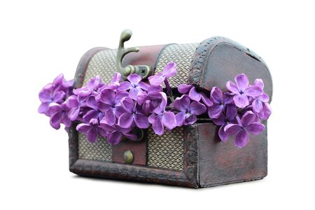 Lilac flowers in wooden chest isolated on white background Zdjęcie Seryjne