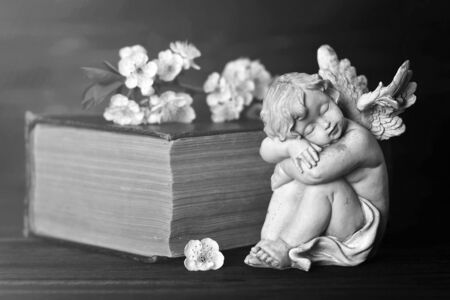 Guardian angel, spring flowers and old book