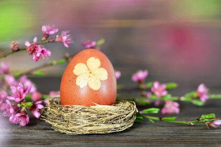 Easter egg in nest and spring flowers on wooden background