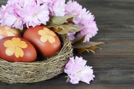 Easter eggs in nest and cherry blossom  Zdjęcie Seryjne