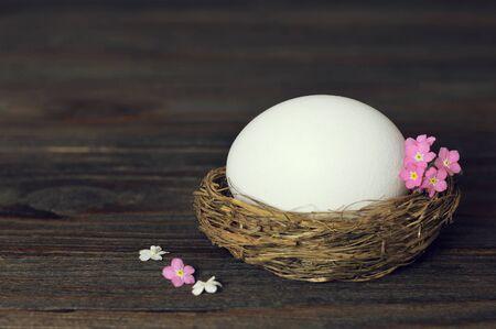 White Easter egg in nest on wooden background Zdjęcie Seryjne