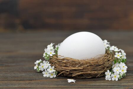 Easter egg in nest and spring flowers