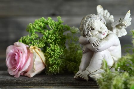 Angel and pink rose on wooden background