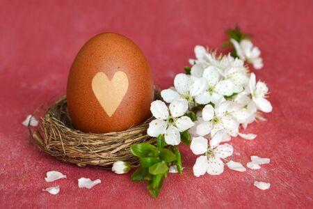 Easter egg in nest and cherry blossom