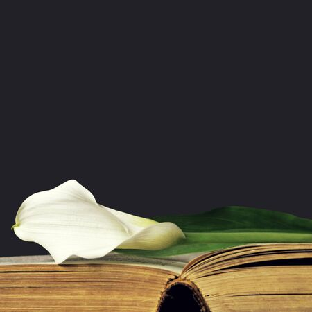 Sympathy card with white calla on open book Stock Photo