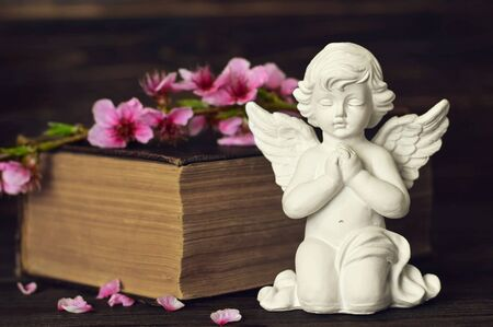 Guardian angel, spring flower branch and book on wooden background