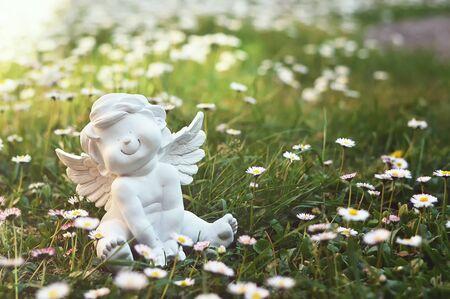 Little cherub and daisy flowers