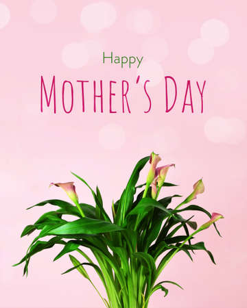 Mothers Day card with pink calla lily bouquet