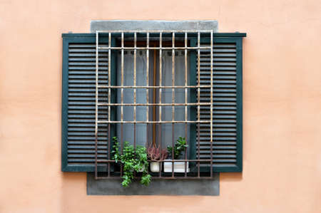Vintage window with iron grate and wooden shutters decorated with fresh potted flowers Imagens