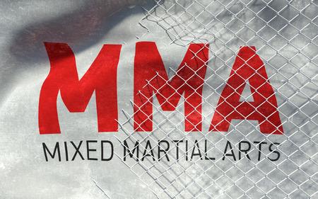MMA concept texture background. 3D Illustration.