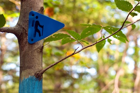 A blue trail marker with a hiker pictogram on a tree in the forest. Stock Photo - 8598210