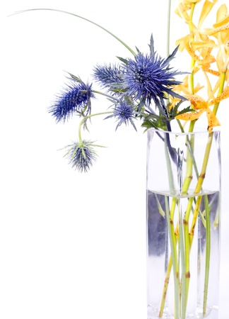 An arrangement of funky, spiky purple flowers and yellow flowers in a clear vase isolated on a white background.