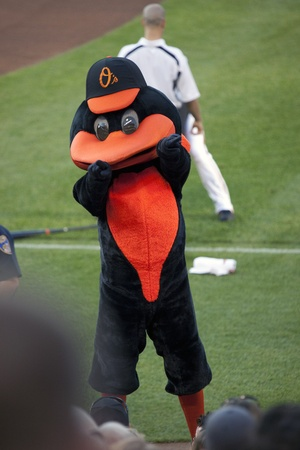 orioles: BALTIMORE - April 30: The Orioles team mascot, the Oriole Bird, rallies fans before the game at Camden Yards on April 30, 2010 in Baltimore, Maryland.