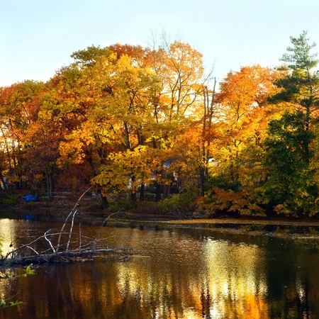 A beautiful autumn landscape with water and colorful trees. Stock Photo - 8774310