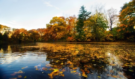 A beautiful autumn landscape with water and colorful trees. Stock Photo - 8774311