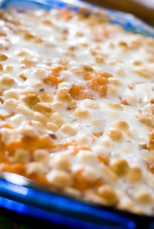 Close up image of traditional sweet potato caserole with browned marshmellow topping  Stock Photo