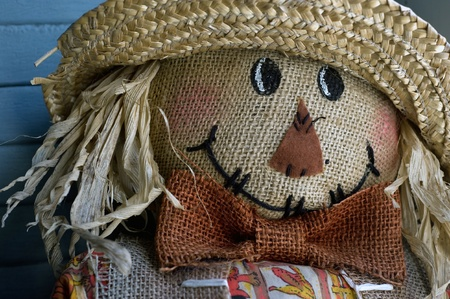 A close up image of a scarecrow face.