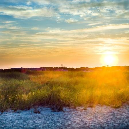 美しい正方形の画像、日没のビーチで。