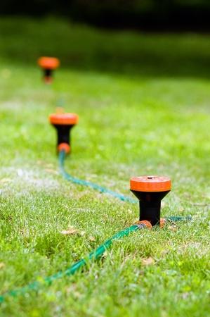 hooked up: A sprinkler system hooked up to a garden hose.