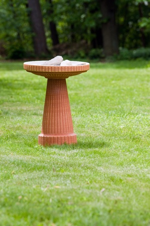 A modern terra cotta bird bath in a nicely landscaped yard.
