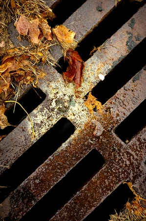 An abstract image of a rusty sewer grate with wet autumn leaves.