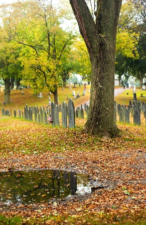 A cemetery in the height of fall after the rain with beautiful foliage. photo