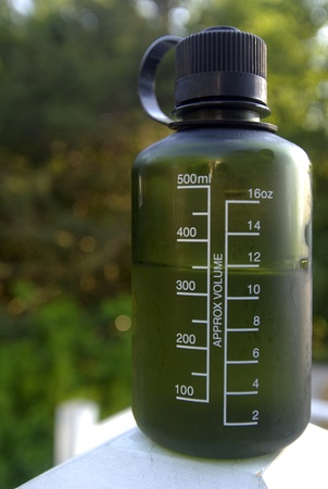 A hard, green, plastic, reusable bottle of water surrounded by green plants