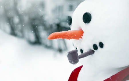 Close up of a cute snow man in winter