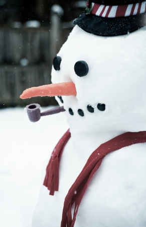 Close up of a cute snow man in winter.