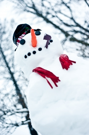 A cute, smiling snowman in winter. photo