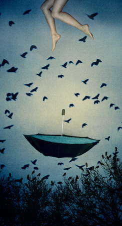 A pair of female legs falling toward a water filled umbrella with crows flying all around  photo