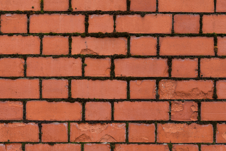 A Brick wall texture background with moss growing in the cracks