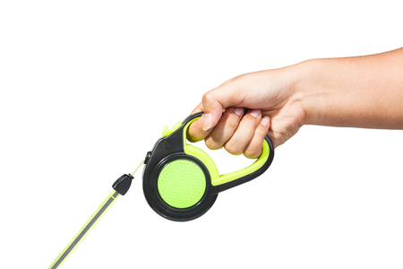 Hand holding black and green retractable dog leash on isolated white background