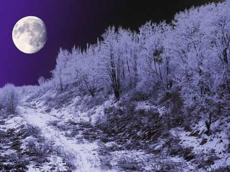 newyear night: Winter Moonlight Stock Photo