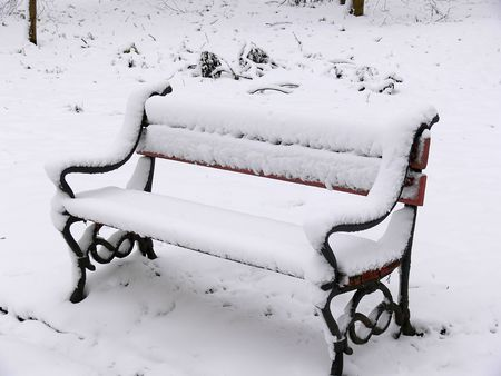 Park bench covered with snow photo