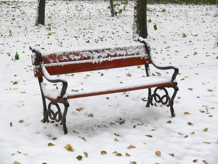 Red bench in the park covered with snow photo