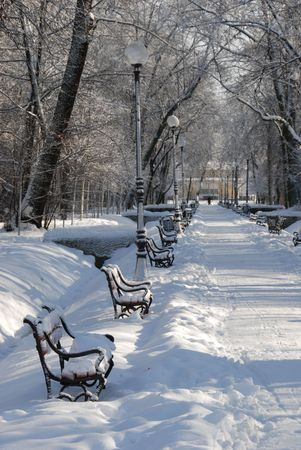 snowlandscape: Red benches in a park covered with snow