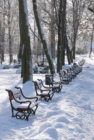 Red benches in a park covered with snow photo